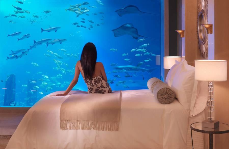 Palm Jumeirah Hotel Atlantis The Palm - Palm Islands Dubai