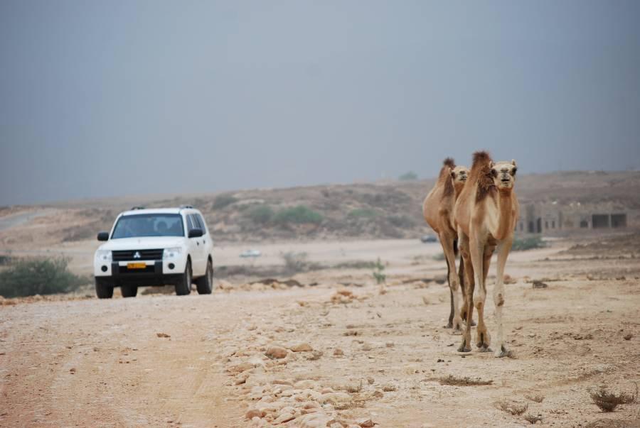 Dubai Car Rental Driving in Oman