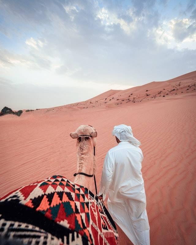 Dubai Desert Safari Tour