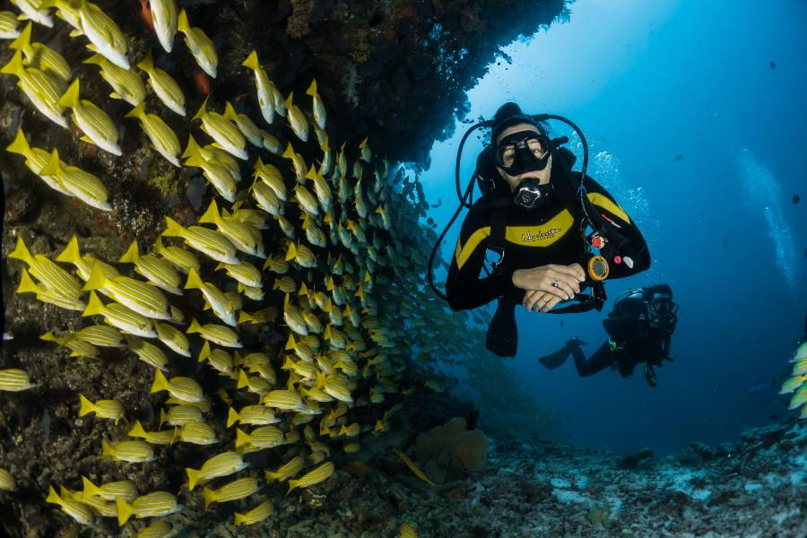 Scuba Diving UAE Fujairah Snoopy Island