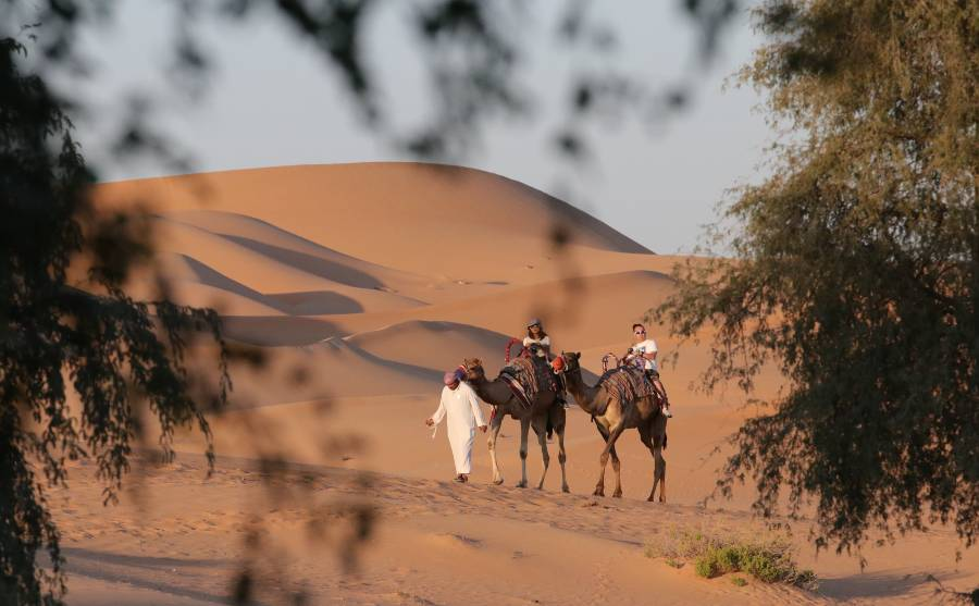 Al Ain Hotels - Telal Resort