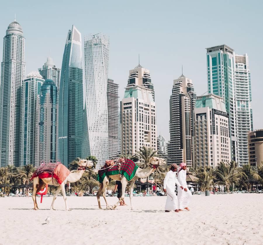 Ride a Camel in Dubai Beach